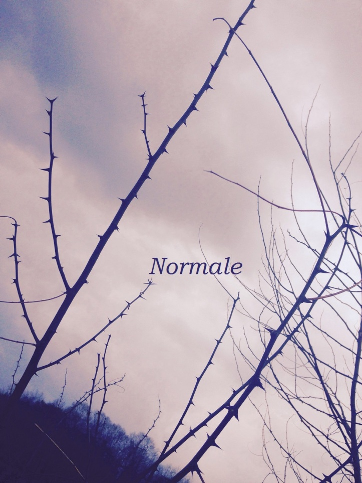 Normale2